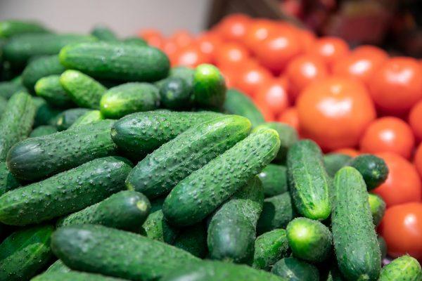 Augintojai atskleidžia, kas lemia trumpavaisių agurkų populiarumą