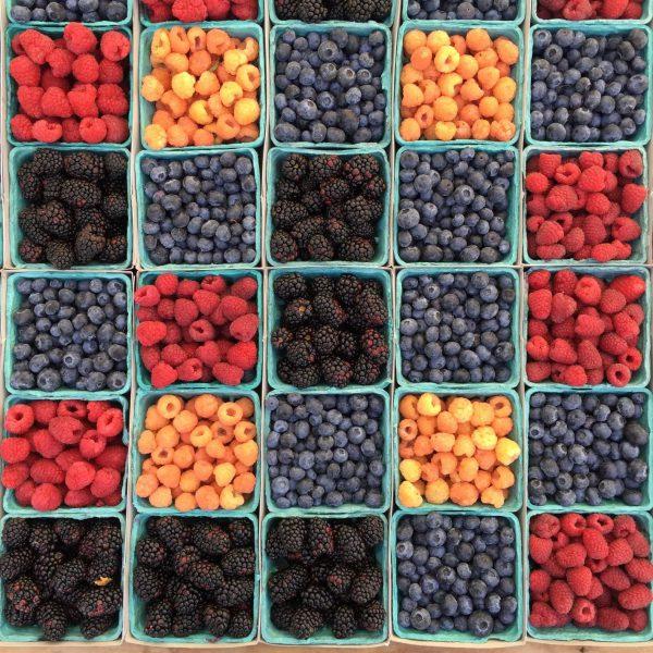 Kovai su maisto švaistymu padeda ir šaltis