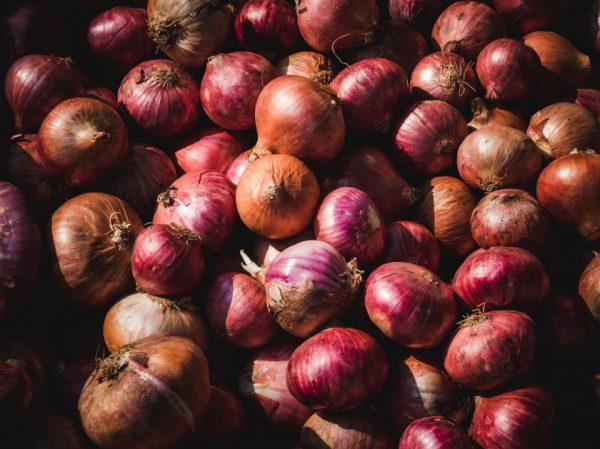 Derlius nenuvylė – rudenį svogūnų kainos sumažėjo