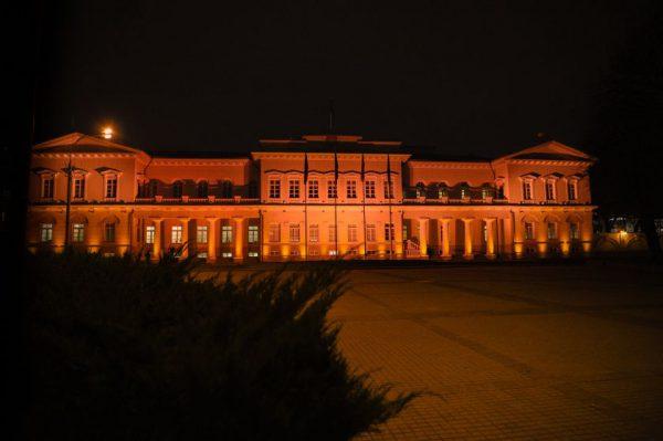 Tarptautinę kovos su smurtu prieš moteris dieną – oranžine spalva nušvitusi Prezidentūra