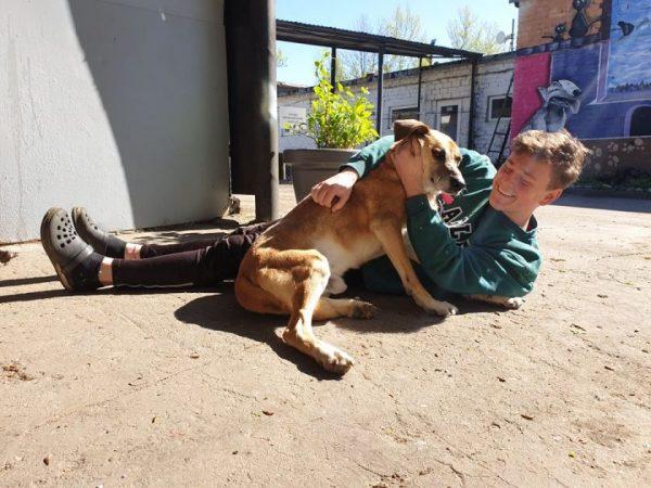Kompanionų ieškantiems žmonėms ir beglobiams gyvūnams atrasti vieniems kitus padeda socialiniai tinklai