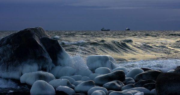 NVO parengė siūlymus, kaip išsaugoti švarią ir gyvybingą Baltijos jūrą