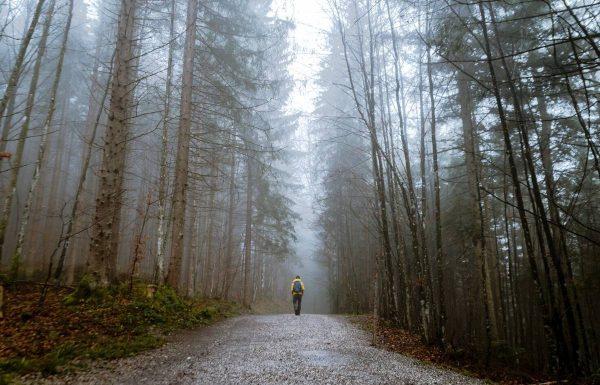 Vlada Musvydaitė ragina nepamiršti žingsniuoti – namuose ir aplink namus
