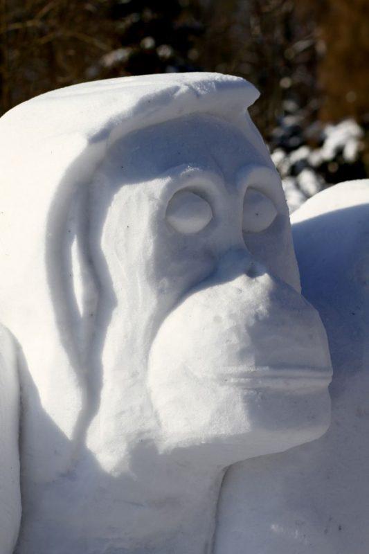 Gamtos trapumą įkūnijo sniego orangutanai VDU Botanikos sode