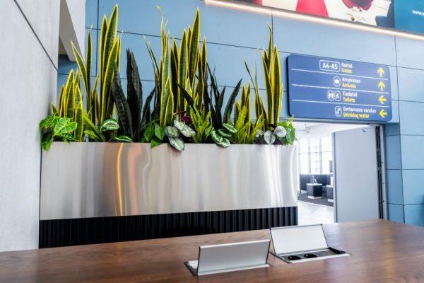 """Vilniaus oro uoste atidaryta kavinė """"Huracan Coffee"""""""