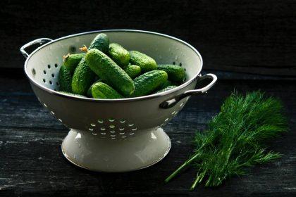 Pavasario hitas – lietuviški agurkai: jų nauda ir kitokių šaltibarščių receptas