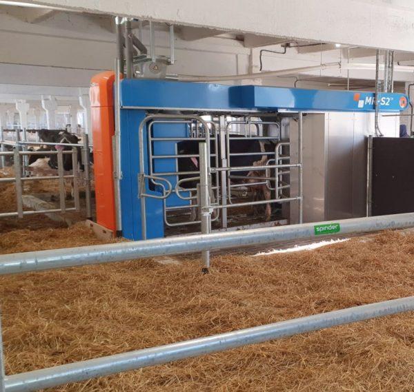 """""""Linas Agro Group"""" valdoma žemės ūkio bendrovė investuoja į melžimo robotus ir vandens lovas karvėms"""