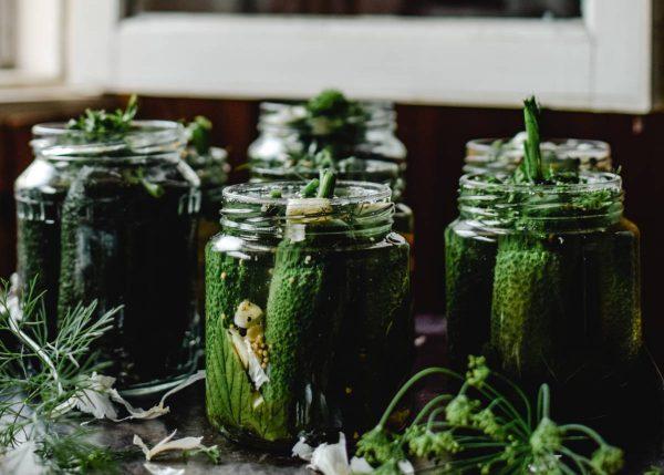 Lengvai parauginti agurkai – pavasariško pietų stalo pažiba